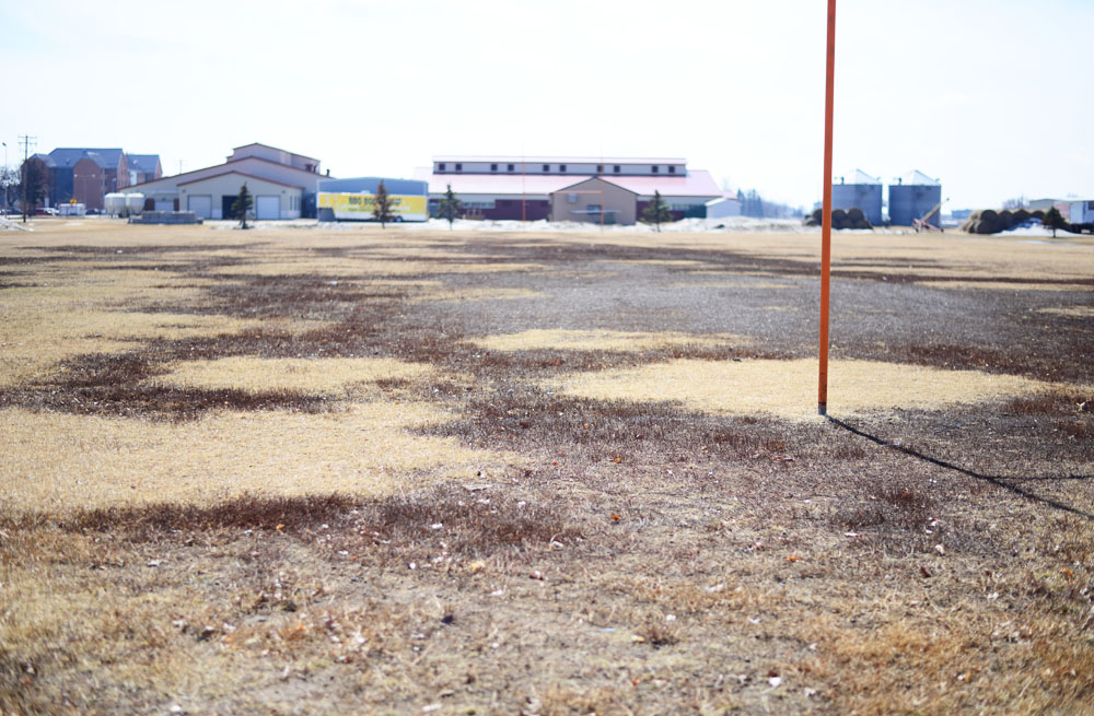 MATAYA ARMSTRONG | THE SPECTRUM The NDSU field used for NDSU club rugby teams has gone through much wear and tear over past years. The teams that use the fields are making an effort to fix the field and keep it in good condition.