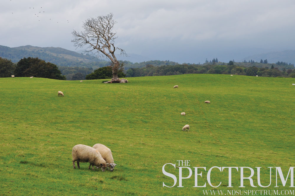 LINDA NORLAND | THE SPECTRUM Trips to the Lake District can be more affordable if booked early.
