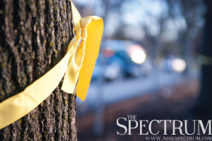 JOSEPH RAVITS | THE SPECTRUM