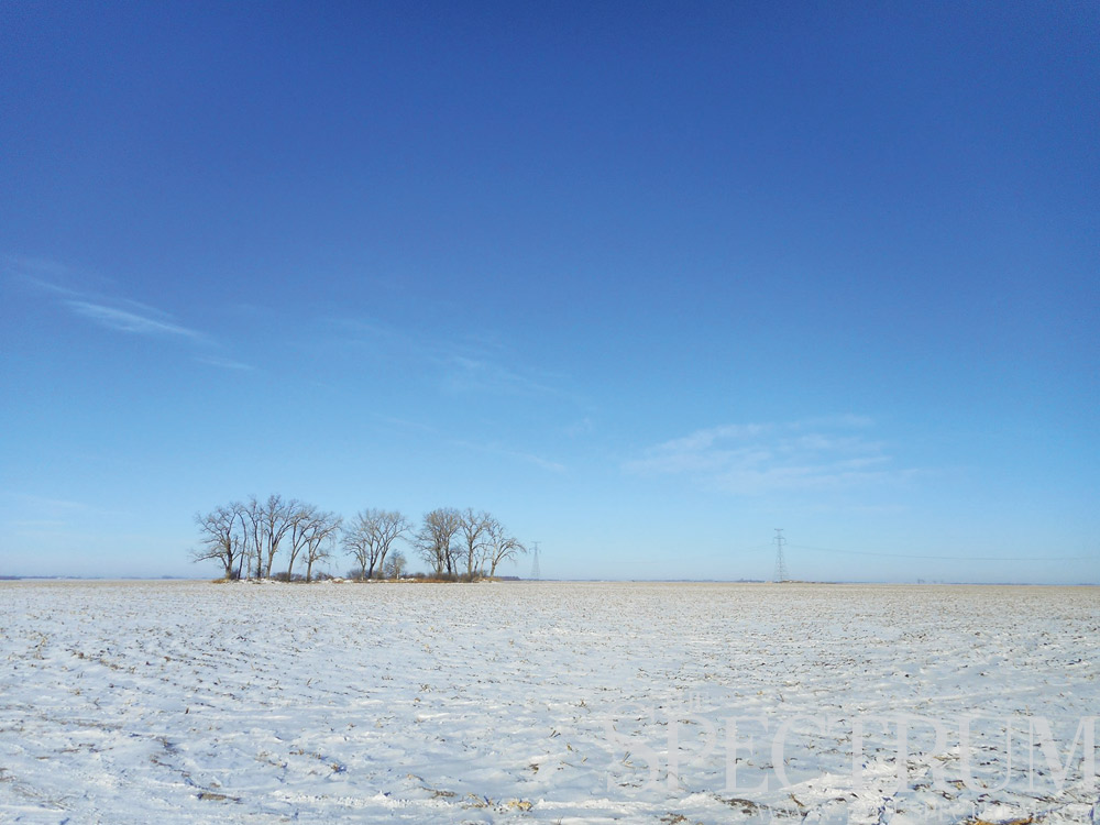 JACK DURA | THE SPECTRUM The vast flatness of eastern North Dakota lends itself to landscape photography on days when the blue sky and white snow contrast.