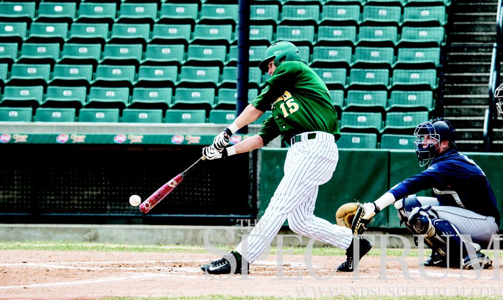 bison baseball